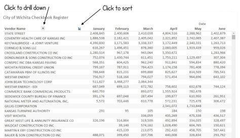 Wichita checkbook register visualization instructions.