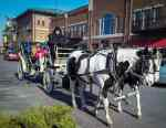 Free carriage rides in Old Town Square Wichita