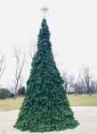 Andover KS Christmas Tree