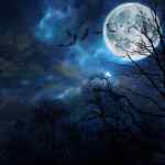 Haunted attractions wichita Halloween events for adults and teens