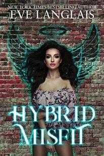 Hybrid Misfit