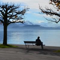 Moseying Around Lake Zug