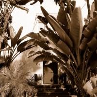 Fenestrations - San Diego, California, USA