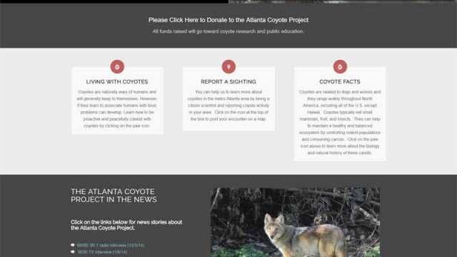 Non Profit Educational Site - Atlanta Coyote Project