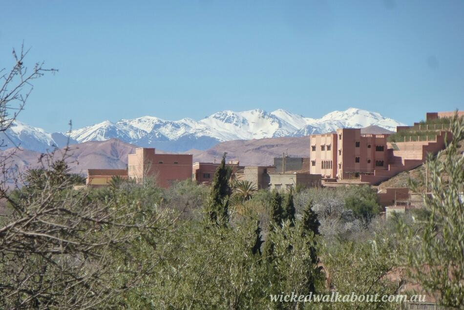 3 Day Tour, Morocco with kids