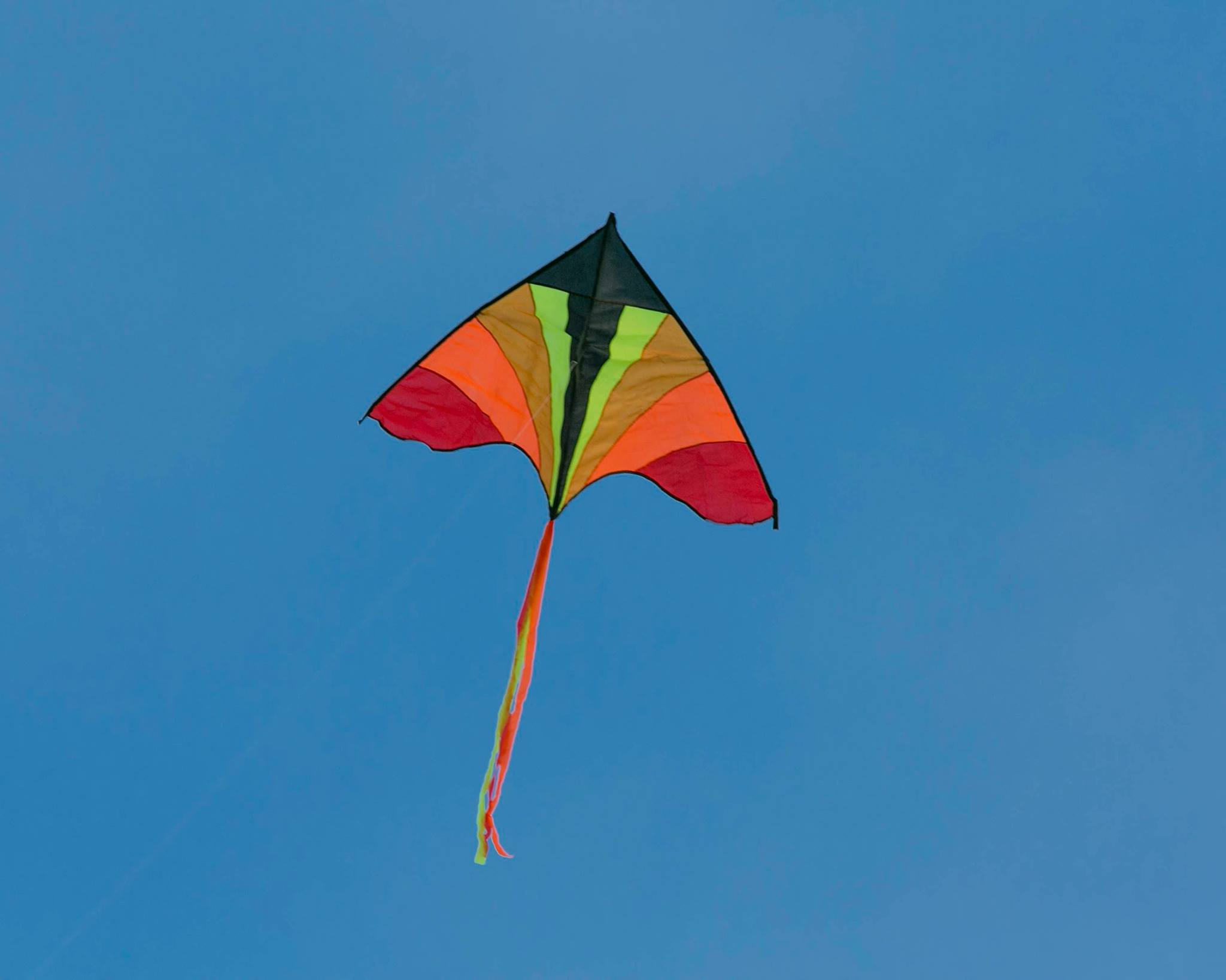 Flying A Kite For Science Wicklownews