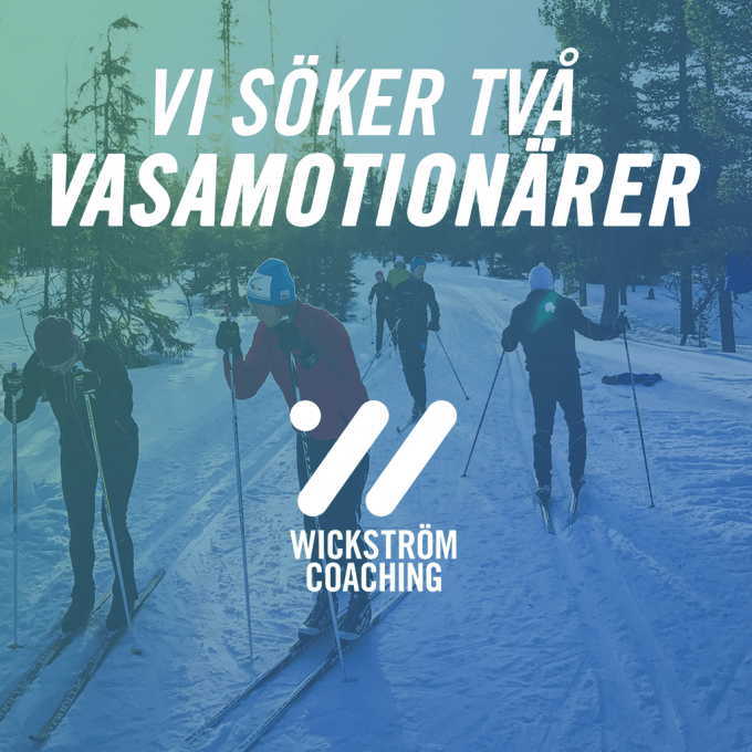 Vasamotionären1