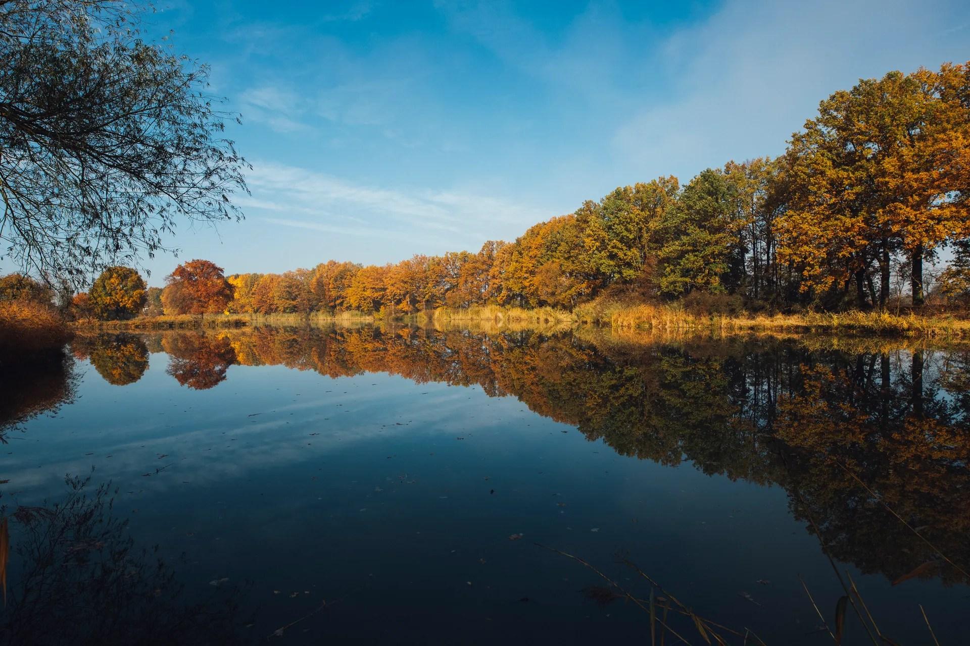 Fall Colors Wallpaper New England Autumn Foliage Above A Bridge Widescreen Wallpaper Wide