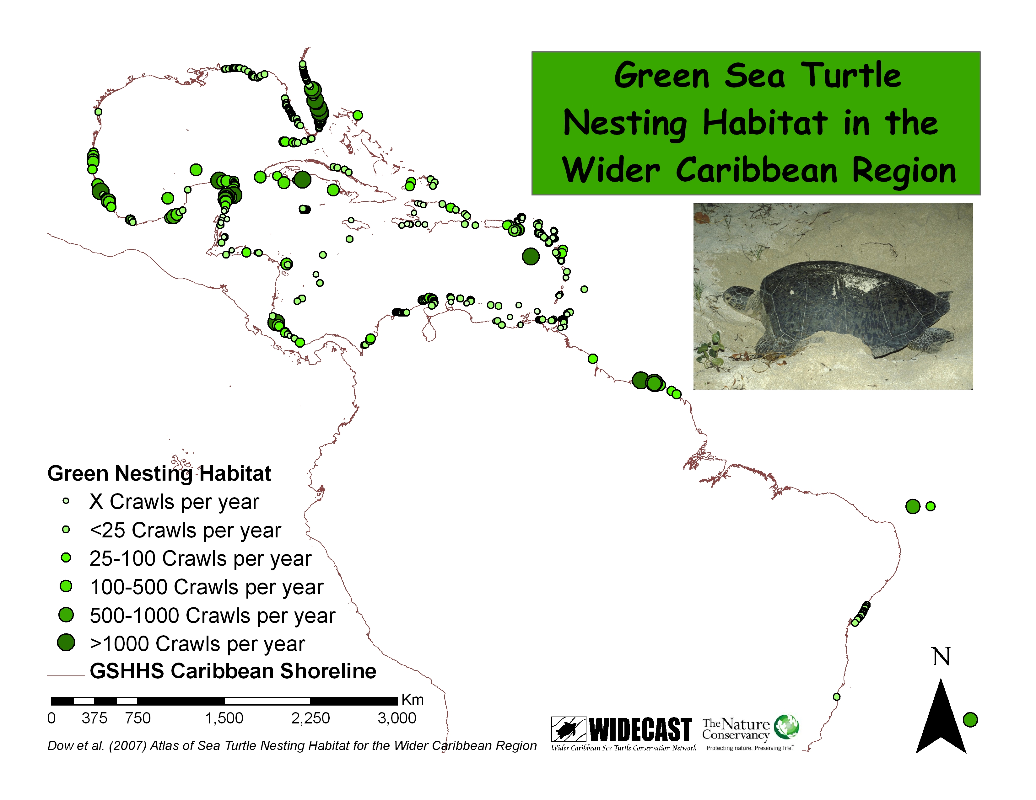 Sea Turtle Nesting Beach Atlas