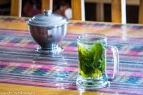 Inca Tea, Peru
