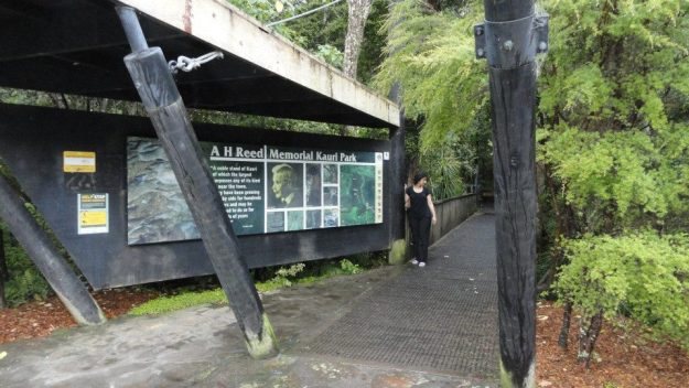 12 We moved on to our next planned walk - at A.H. Reed memorial Kauri park