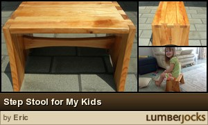 Step Stool for My Kids