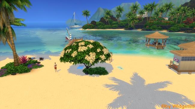 Tempo livre na praia