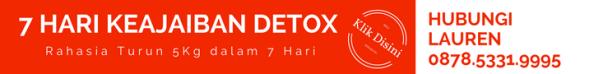jual easy detox pelangsing