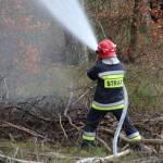 Pożar lasu. Na miejscu 30 zastępów Straży Pożarnej