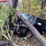 Więcbork: Ford wypadł z drogi i wpadł do przydrożnego rowu