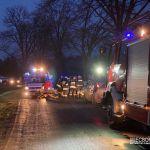 Wypadek w Zalesiu. Opel uderzył w drzewo [FOTO]