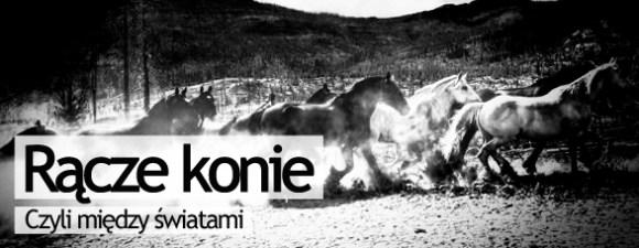 Bombla_Konie