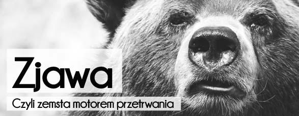 Bombla_Zemsta