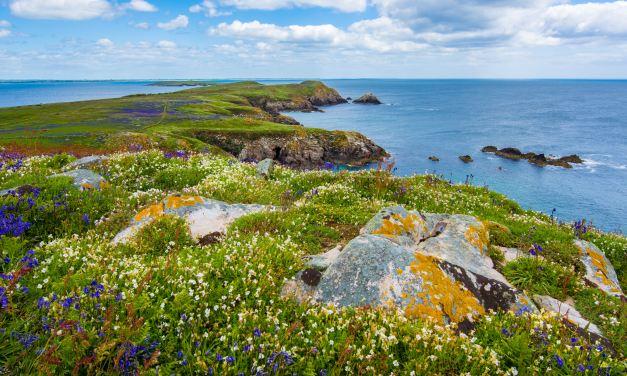 2018 Sprachreise nach Irland