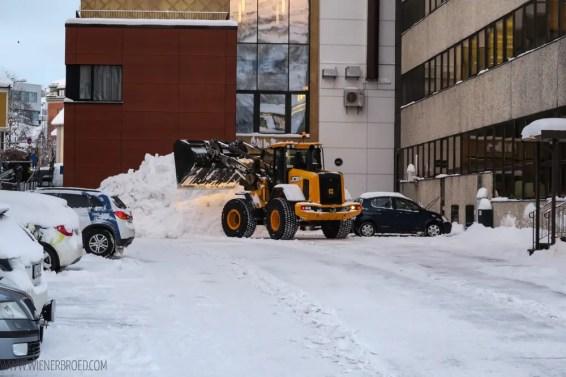 Aida-Winter-im-hohen-norden_T2-Tromsoe-10