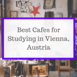 Best Study Spots in Vienna