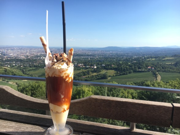 Summer Things to Do in Vienna