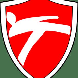 wien taekwondo logo 1