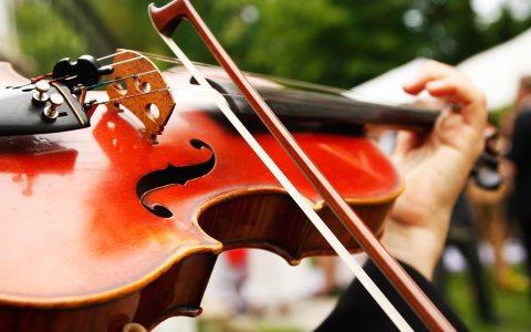 Violinist. Foto: Marko Greitschus / pixelio.de