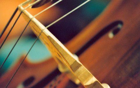 Kontrabas Bild: Helsingborgs Konserthus / Flickr