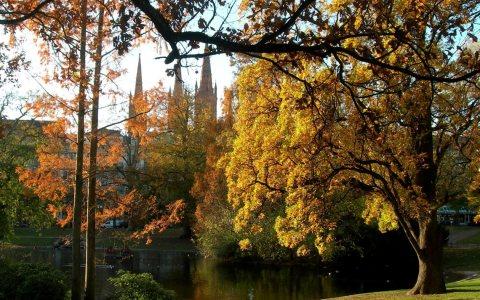 DasFarbenspiel geht weiter. Diesmal zeigt der Herbst seine Pracht. Bild: Ingrid Herta Drewing