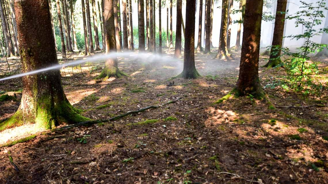 Einsatzübung: Brand im Wiesbadener Stadtwald