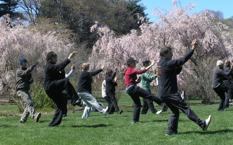 Yang's Martial Arts Association members participate in the 2006 World Tai Chi Day celebration.©2018 Brian Robinson / Flickr / CC-BY 2.0