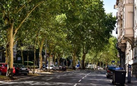 Ringstraße in Wiesbaden. neue Parkregelung. Halteverbot. ©2018 Volker Watschounek
