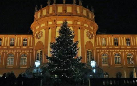 Übergabe des Weihnachtsbaum an Biericher Bürger
