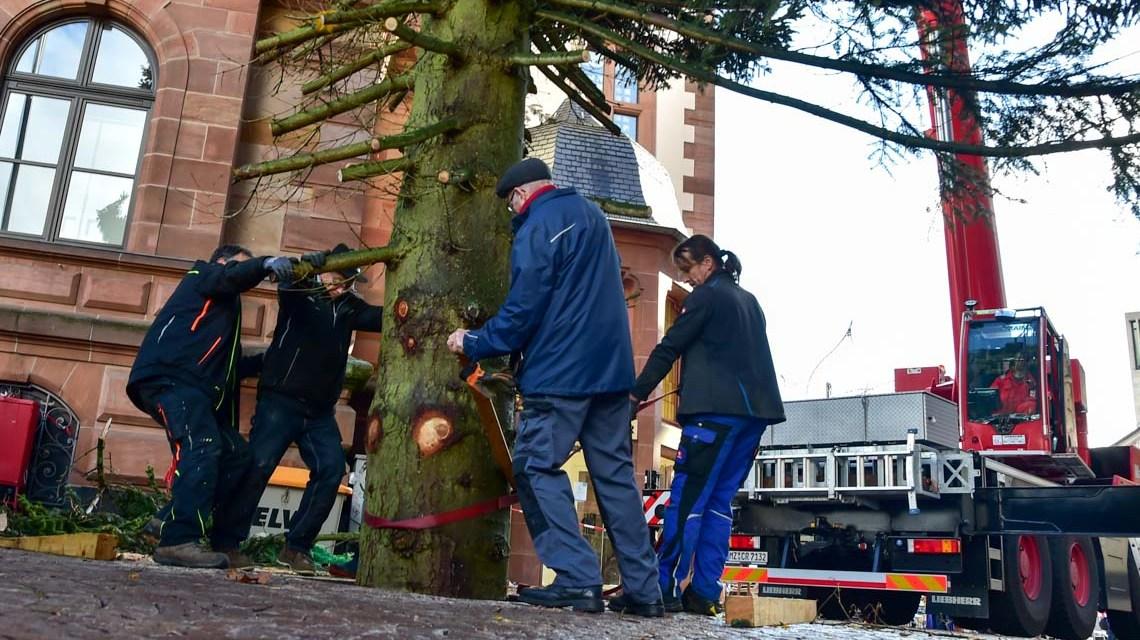 Weihnachtsbaum aufstellen in Wiesbaden. @2018