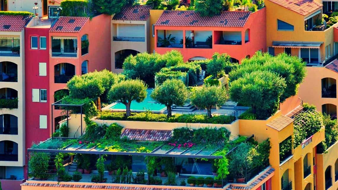 Erneuerung, Dachgarten ©2020 Elvira Groot auf Pixabay