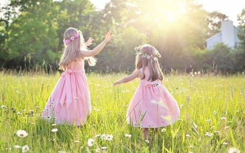 Sommer ©2020 Jill Wellington auf Pixabay