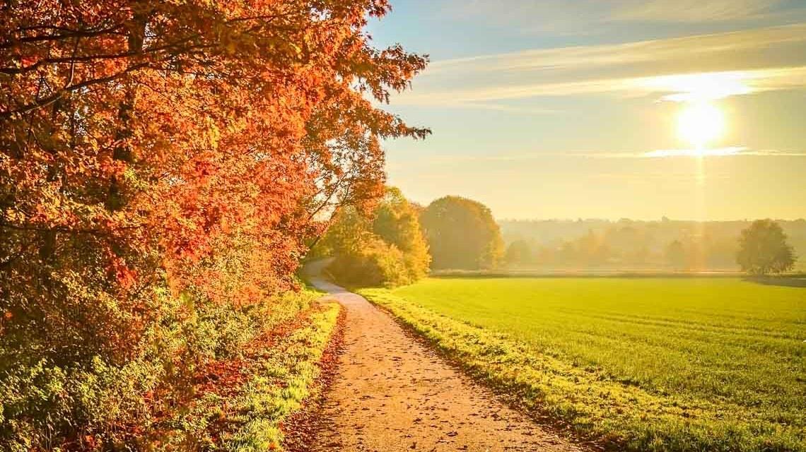 Sonnenuntergang im Herbst ©2020 ddzphoto auf Pixabay