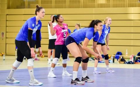 Testspielwochenende gegen Schwarz-Weiß Erfurt. Am Freitagabend haben Wiesbadens Volleyballerinnen gegen Ligakonkurrenten alles fest im Griff. 4:0. Am Samstag ist es ausgeglichener. Am Ende steht es nach acht Sätzen 6:2 für Wiesbaden.