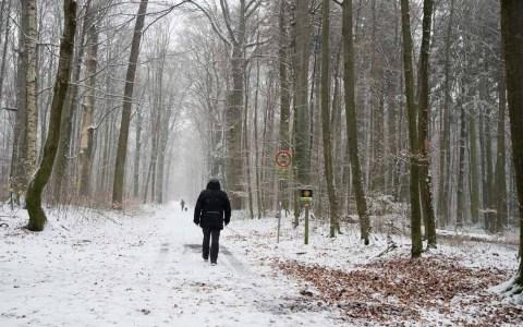 La Niña: Weiße Weihnachten?