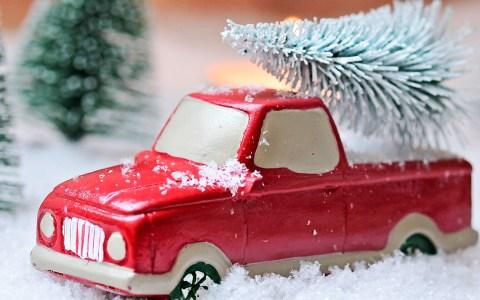 Weihnachtsbaum richtig lagern oder gleich aufstellen. So bleibt er lange frisch