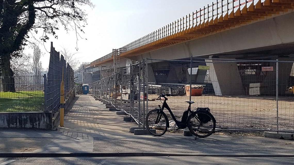 Verbindung des Naherholungsgebietes Rheinwiesen Biebrich zur Rheingaustraße