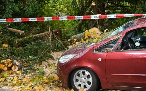 Sturmböen: Sturmschäden in Wiesbaden