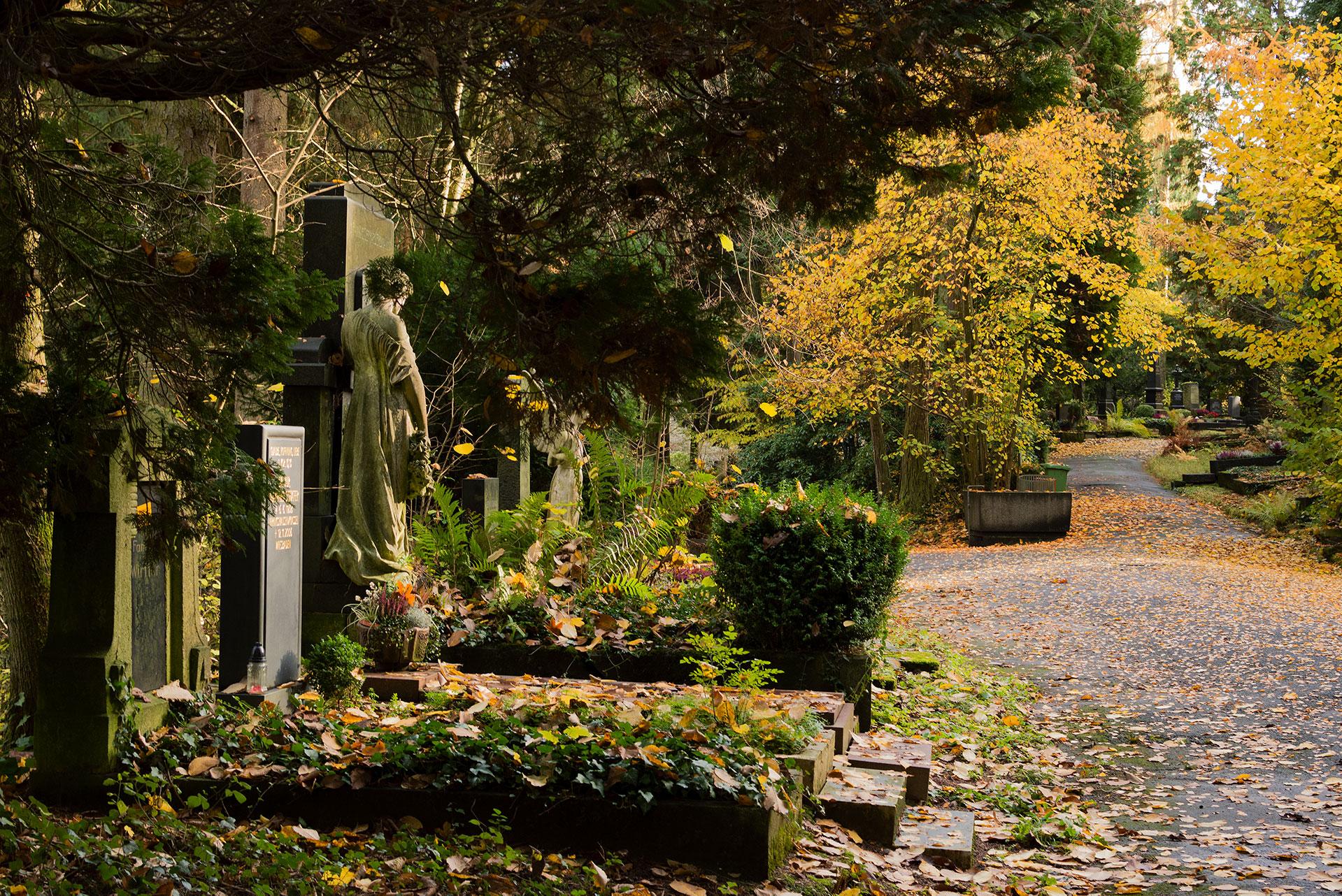 Wiesbaden-Nordfriedhof Indian Summer#1