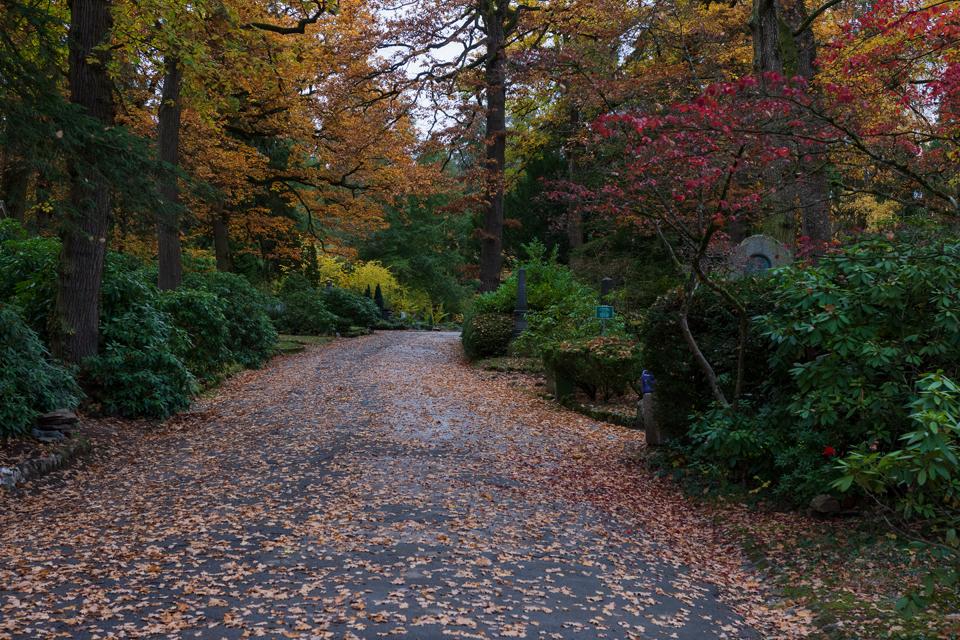 Wiesbaden_Nordfriedhof_2018111-0378-1.jpg