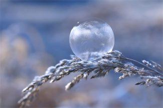 Morgenfrost im März... gefrorene Seifenblase
