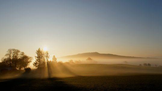 Licht und Schatten im Nebel