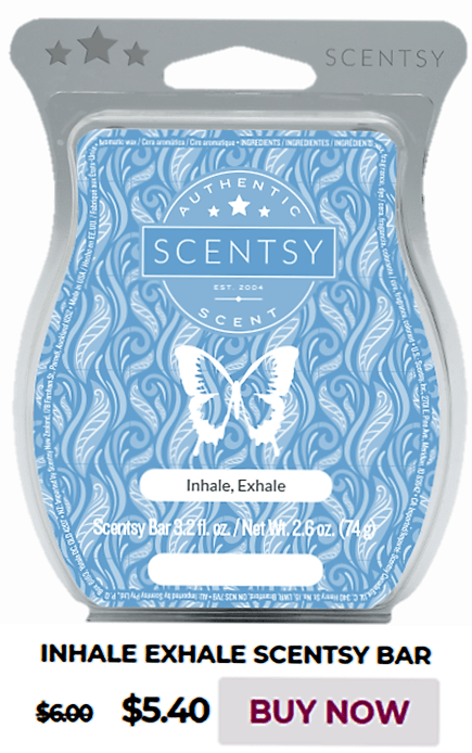 Scentsy Warmer Of The Month Himalayan Salt & Inhale, Exhale Scent for January 2020