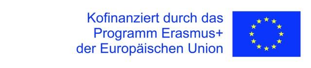 Talentmanagement 4.0 Disclaimer Erasmus+